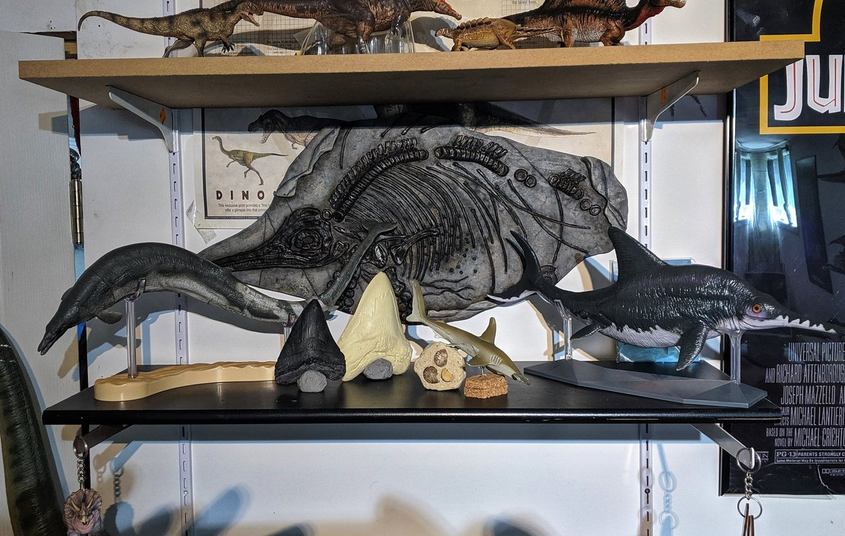 Basilosaurus tagged Tweets and Download Twitter MP4 Videos