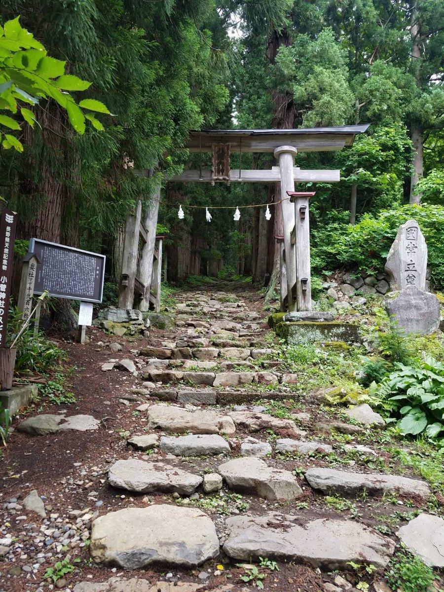 長野県の最北端、飯山市にある縁結びで有名な「小菅神社」へスタッフが行ってきました?奥社まで約1時間かけての登山!会員様とスタッフの祈願をしてきました?小菅神社へ参拝すると「お嫁にいける」そうです?HMdの #結婚相談所 であなたのご成婚お任せください♡#婚活  #パワースポット