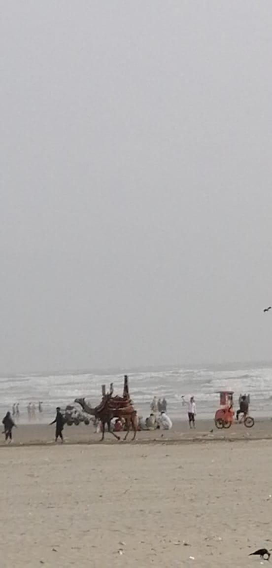CliftonBeach #Karachi #ArabianSea #Camels #Beach #waves
