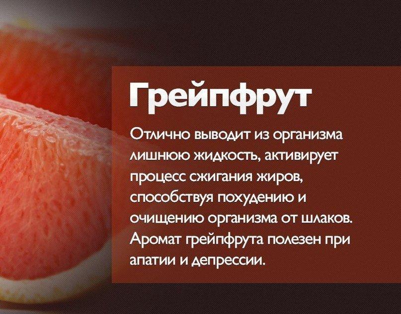 Можно ли есть грейпфрут для похудения