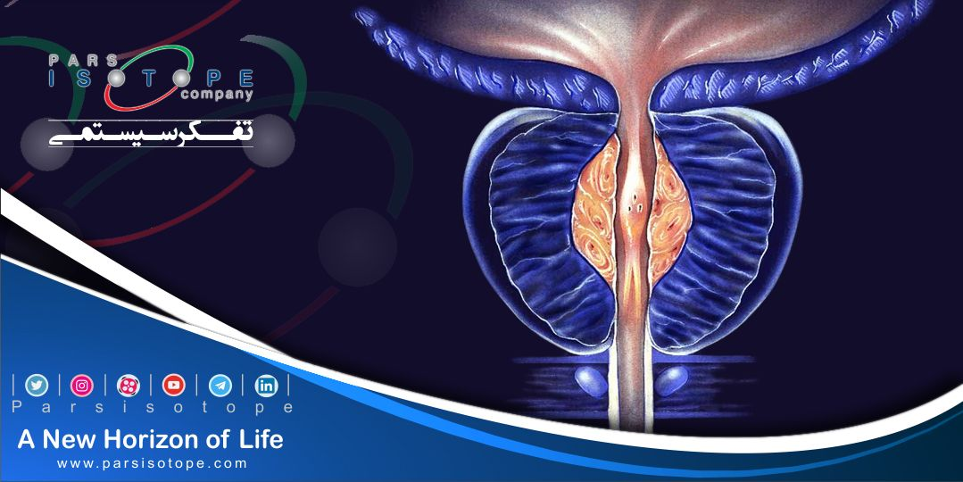 Prostate is a part of male reproductive system located underneath the bladder and in front of rectum. #prostate_cancer has no sign in early stages but in advanced cases, it causes urinary problems. Some of its' early signs are frequent urination, hematuria and pelvic discomfort.