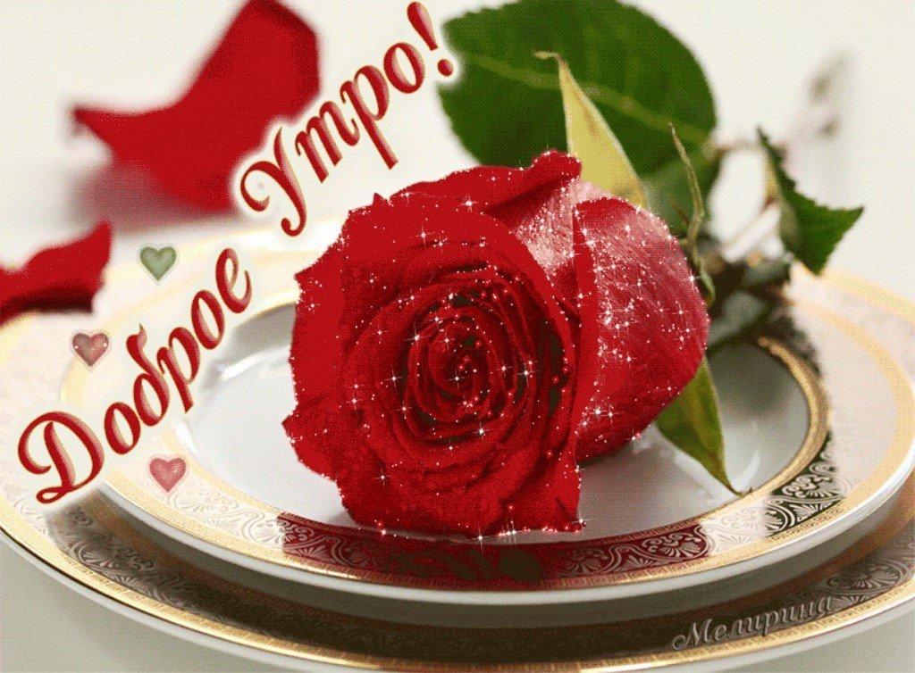 С добрым утром любимая букет роз, букет дорого корзина