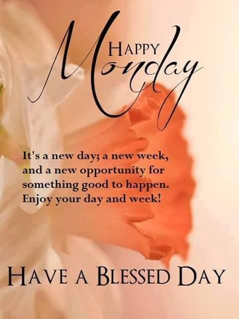 It's a new day new week & a new opportunities for something good to happen..   #Mondaymorning #mondaymorningsmile   #MondayMorningMindset #mondaymorningmovementmotivation #mondaymorningcritic  #mondaymorningthoughts #mondaymorningmood #MondayMotivaton #mondaythoughtspic.twitter.com/1AwHxRkK7T