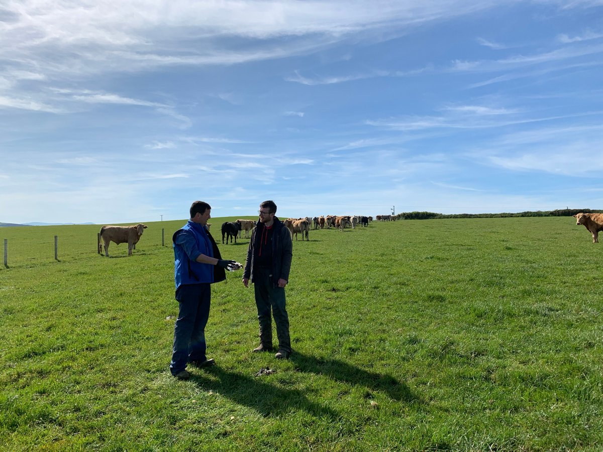 The Parasite Management Program with @FarmingConnect is a great resource to see the outcomes of routine FEC. 10 Focus sites in Wales are using the FECPAK G2 and the results and outcomes are shared here.  Keep an eye for updates as the project develops.   https://businesswales.gov.wales/farmingconnect/parasite-management-project…