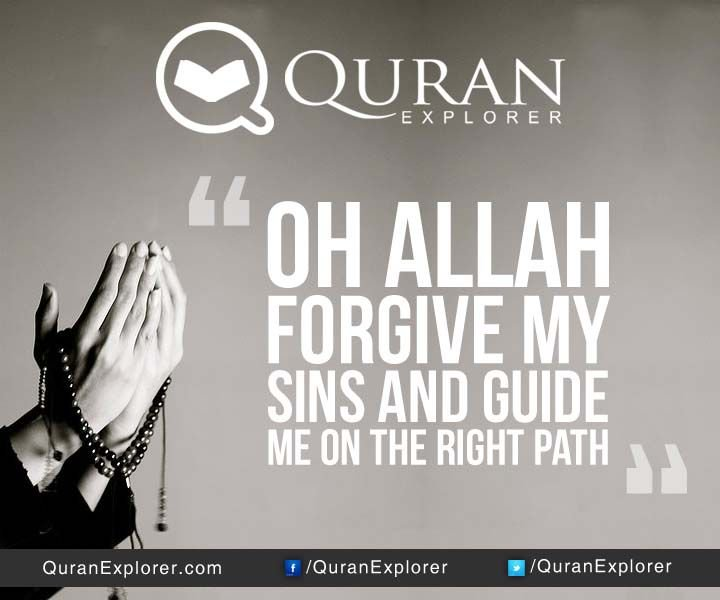 Quran Explorer Word Search
