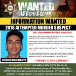 Image for the Tweet beginning: #WantedWednesday DO YOU KNOW WHERE NOAH