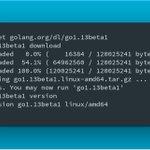 Image for the Tweet beginning: ⚡️ Go 1.13 Beta 1
