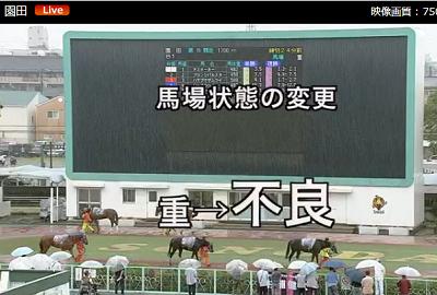 #園田競馬  平日の大雨の中、地方競馬の園田のパドックをみている人がいる。 こういう日本大好きです。