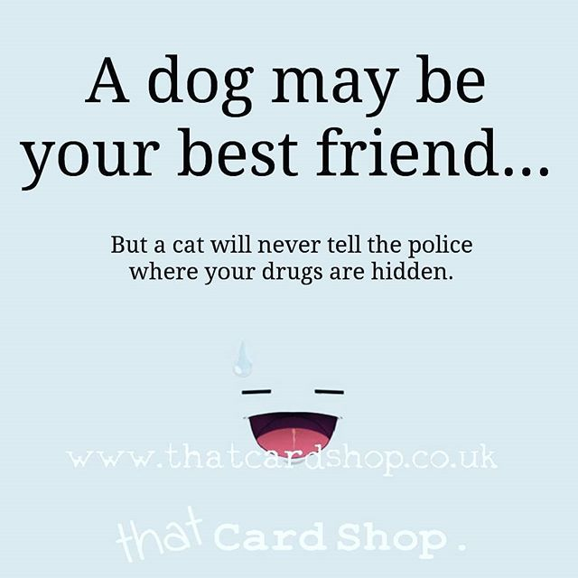 So who is really your best friend huh? #catsanddogs #cats
