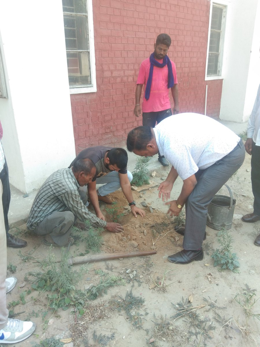 """Just now ·  #MYMSME Plantation drive in office areas  on 21.06.2019 during """"Swachhta Pakhwada 2019"""" at CIHT Jalandhar https://t.co/OOU39qsr75"""
