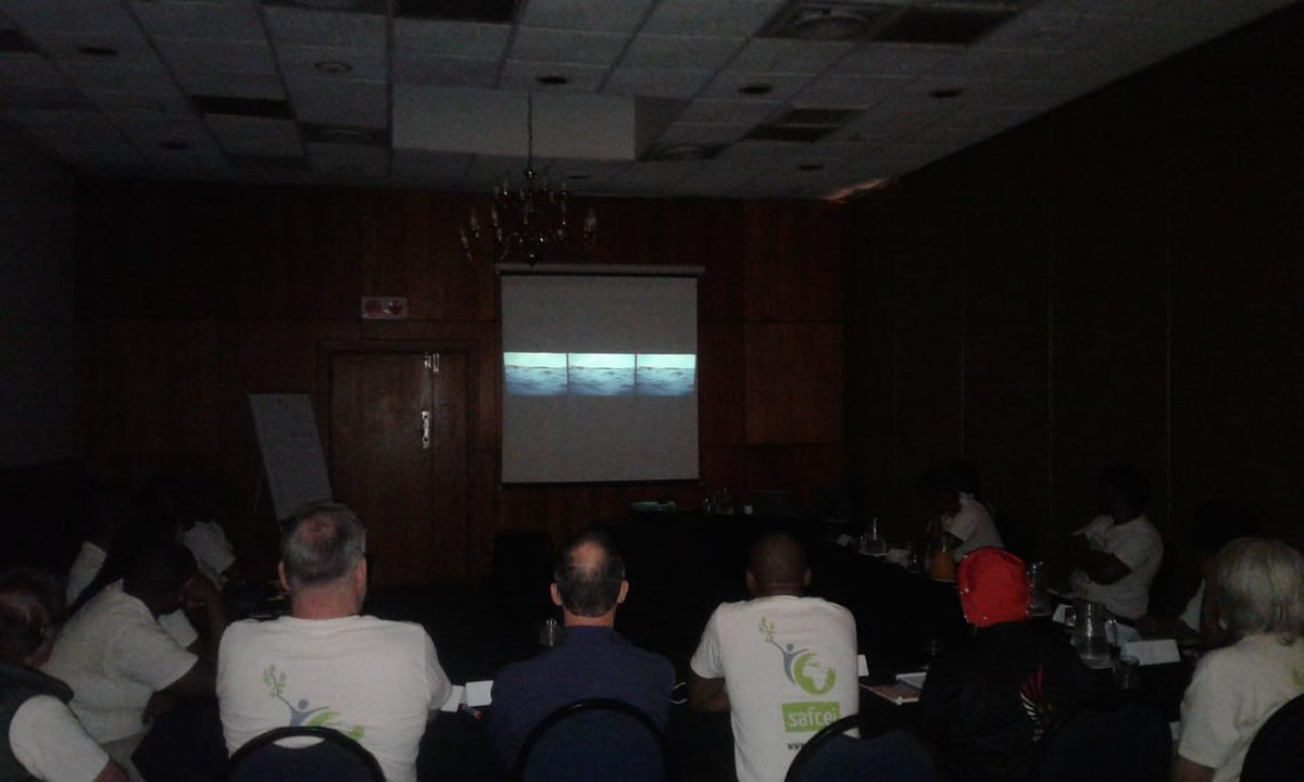 #FLEATSA group watching 'Becoming Visible' by Janet Solomon