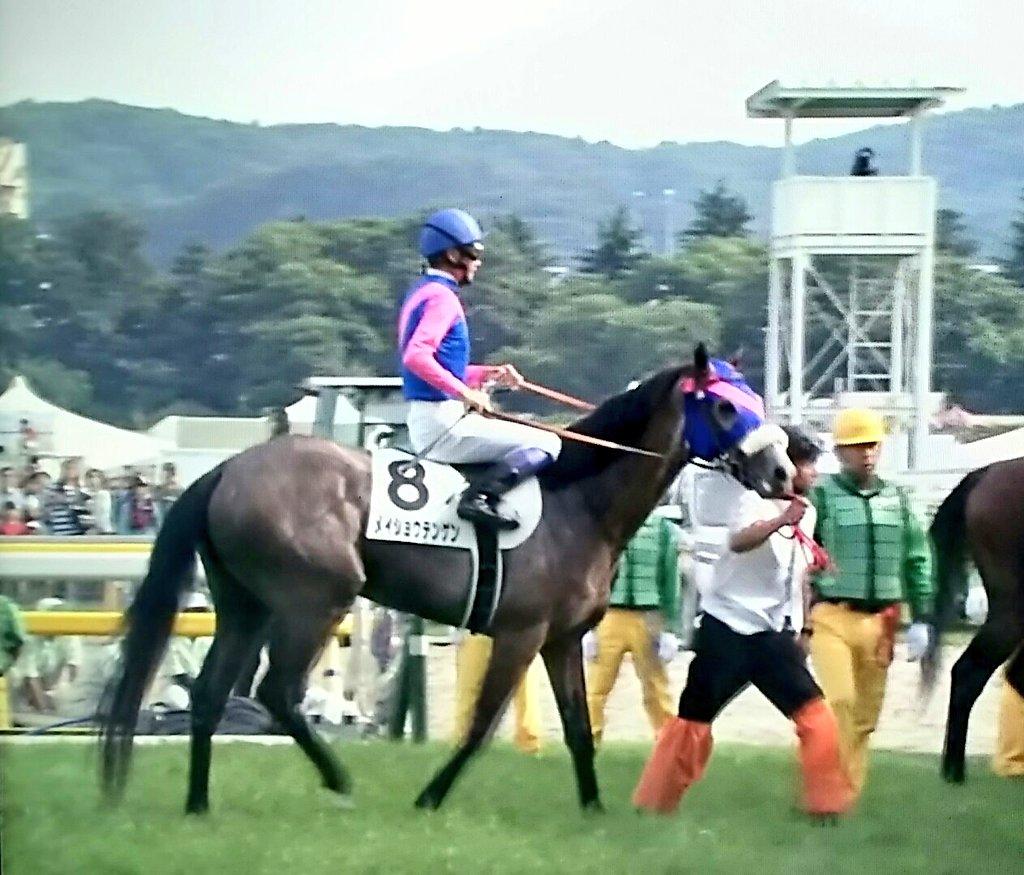 弥生賞の勝ち馬で日本ダービー10着のメイショウテンゲン(牡3栗東・池添兼雄厩舎)は9月22日のGⅡ神戸新聞杯から始動して、10月20日の菊花賞に向かいます。父ディープインパクト、母はメイショウベルーガで人気の高い馬。秋の巻き返しが注目されますね。