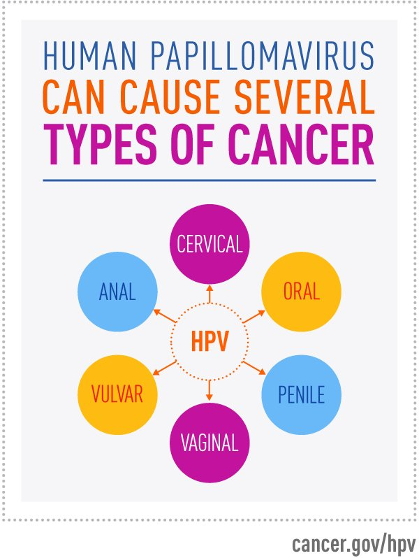 National Cancer Institute On Twitter The Hpvvaccine Gardasil 9 Protects Against Infection With Nine Hpv Types Including The Two That Cause Most Genital Warts And The Seven That Cause Most Hpv Related Cancers