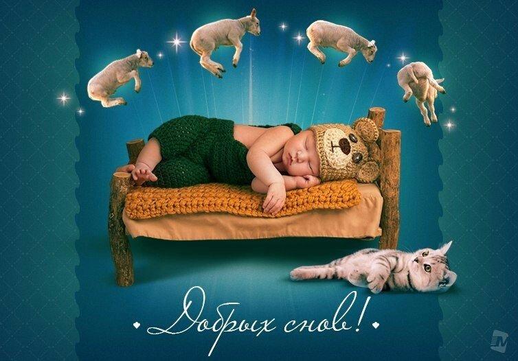 легалов сладкий сон картинки юмор часто контролируете свои
