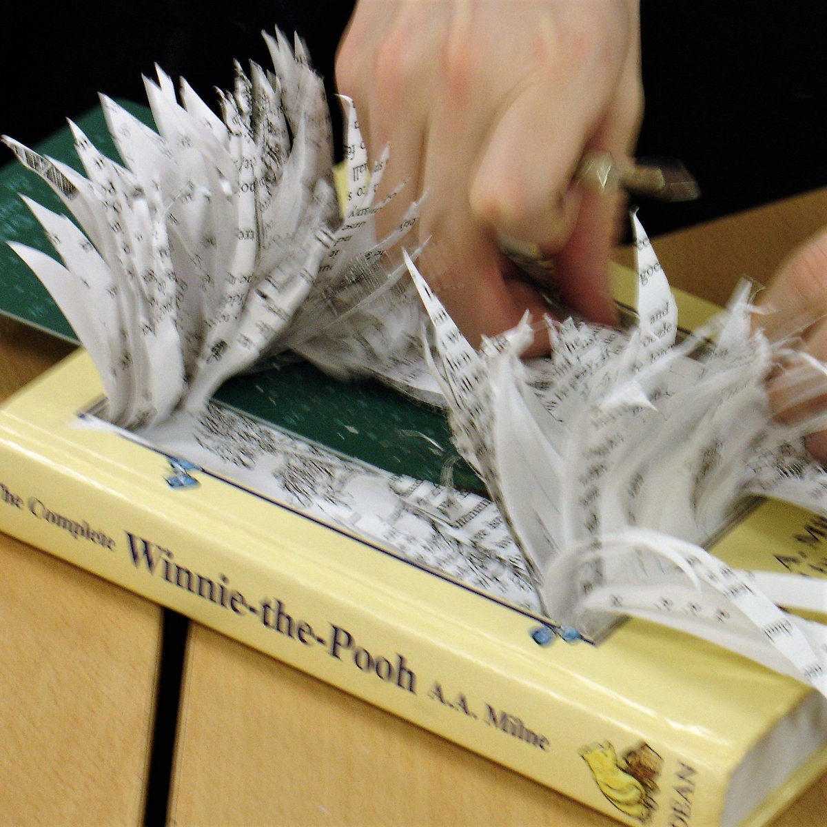 Make your own book sculpture workshop with Isabell Buenz! £25   11-2pm   13th July kirkcudbrightgalleries.org.uk/event/make-a-3…
