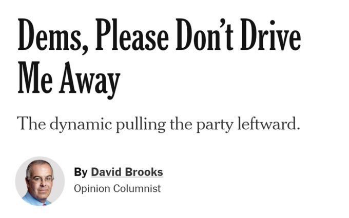 "currently going from swing state to swing state handing out copies of this op-ed screaming, ""WE CAN'T LOSE DAVID!!!"""