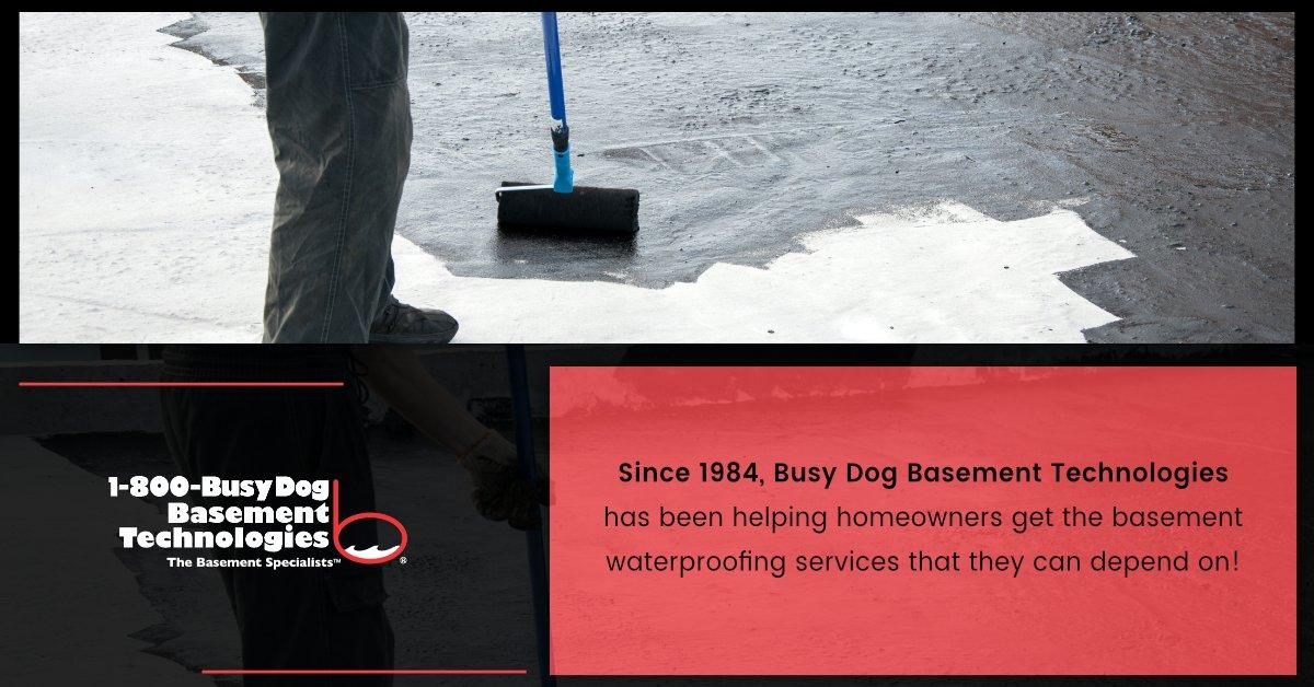 1 800 Busy Dog 1800busydog Twitter