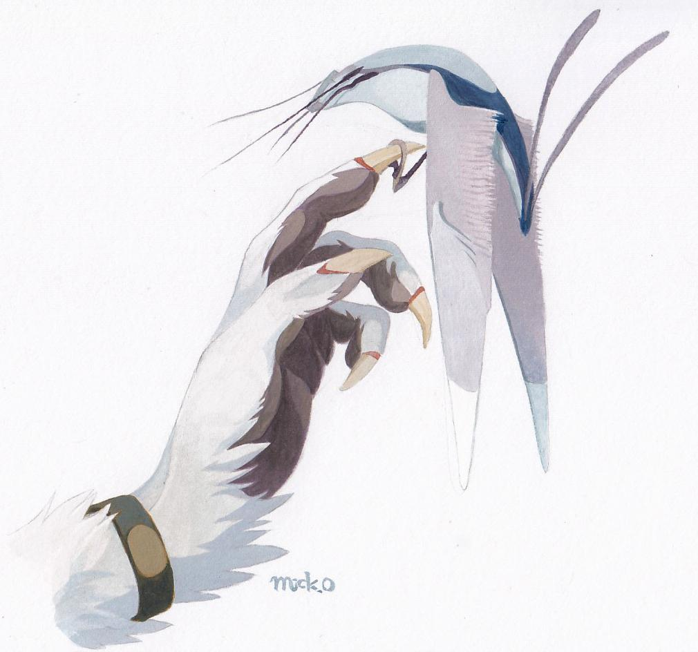 📖Wiki and Lore Update!  Read up on the Talyxian-Birds, such a mystifying and astonishing organism which seem familiar but is quite something apart!  ビロウスWiki新記事:タリクシアンの鳥  English: http://vilous.net/wiki/Talyxian-Birds…  日本語: http://vilous.net/wiki/%E3%82%BF%E3%83%AA%E3%82%AF%E3%82%B7%E3%82%A2%E3%83%B3%E3%81%AE%E9%B3%A5…  #Talyxian #Vilous #Sergal