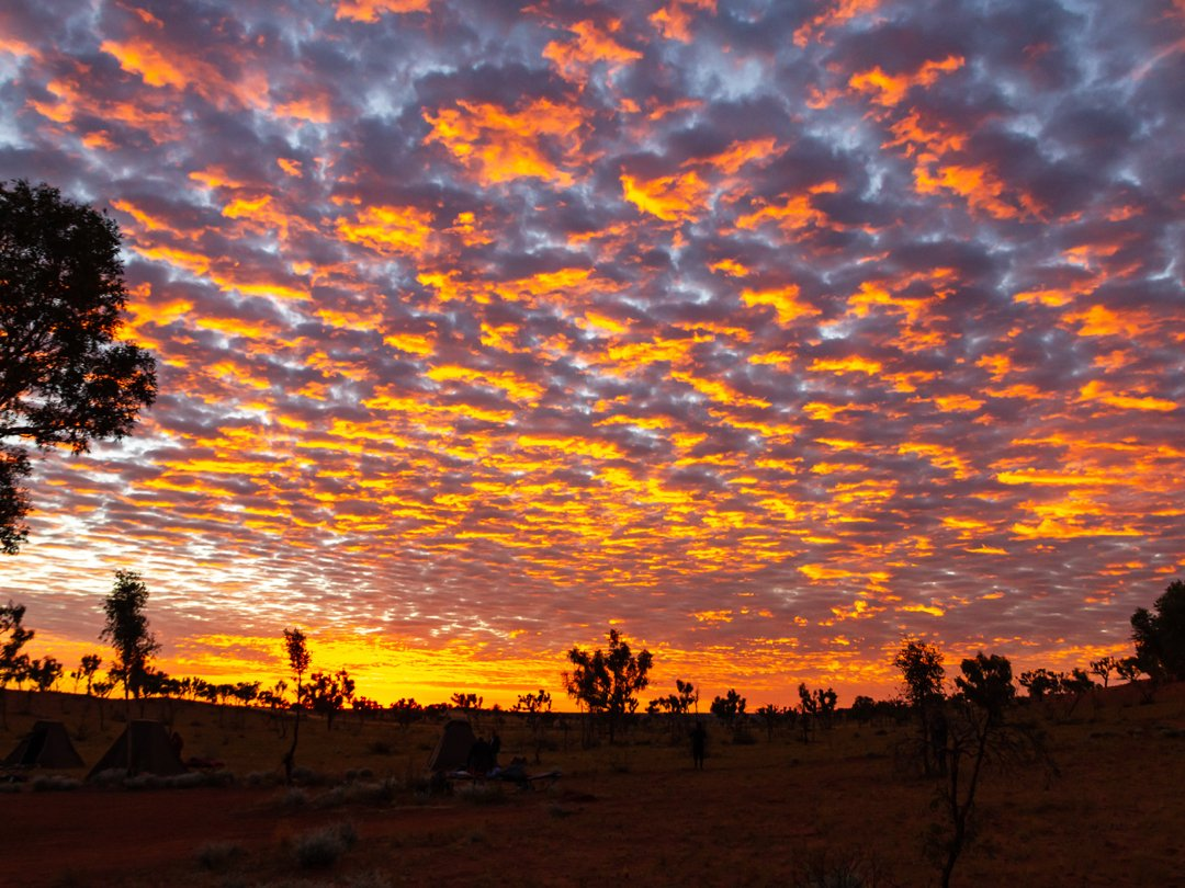 This is the type of sunrise you can expect along the Canning Stock Route. Definitely worth waking up early to catch this amazing display before you pack up camp and continue your adventure! Pic:IG/virrojo #goldenoutback https://t.co/g0xowkrPM4