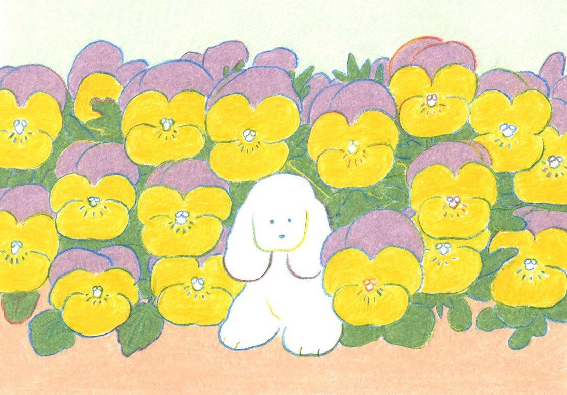 犬と花の絵展 遊びに来てくださった方ありがとうございました🌻🌼🐶🍀🌷