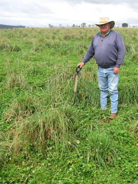 Weed control through improving soil fertility - no herbicides & #profitable #RegenerativeAgriculture case study #agchatoz http://ow.ly/8IP330p0lne