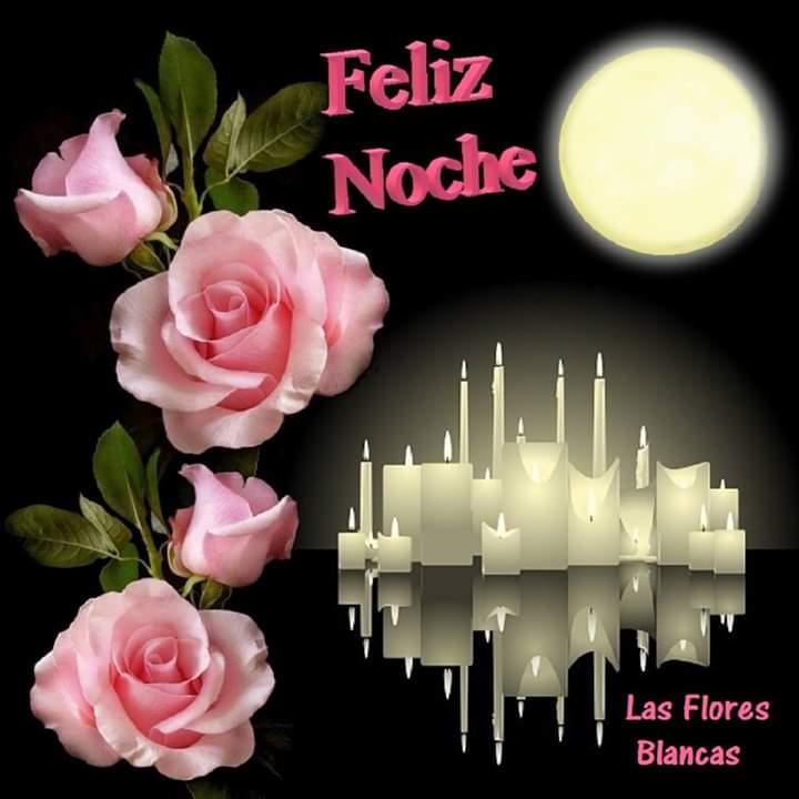 flores de buenas noches