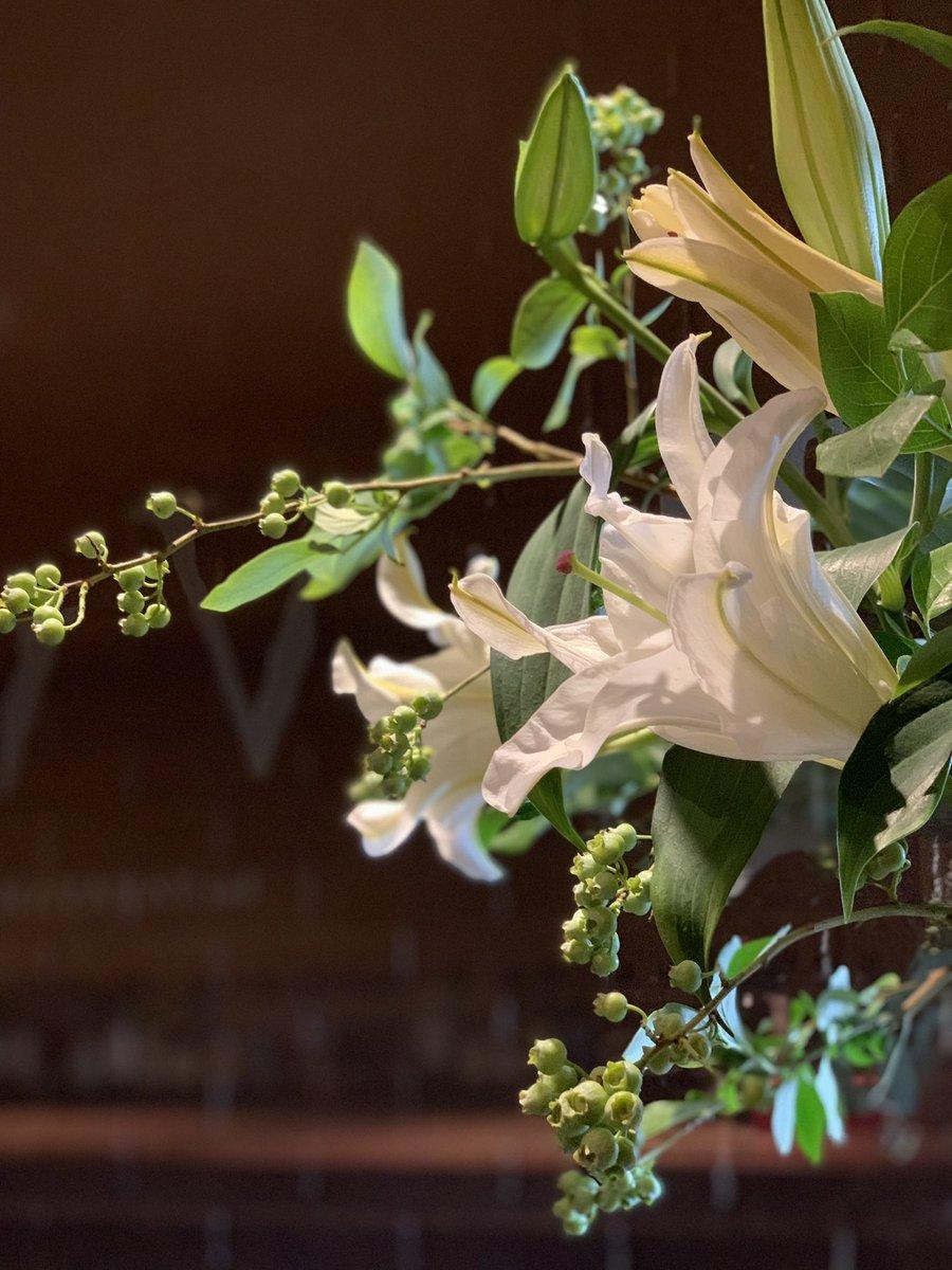 不快な蒸し暑さをスーッと和らげてくれる香り  今週はユリの女王カサブランカ、とても好評です  #amicaflowers #flowers #ikebana #lily #bar #saravah #ashiya #casabranca #lilies #花のある暮らし #芦屋 #投げ入れ #カサブランカ
