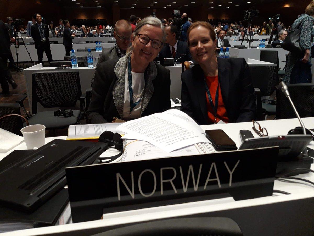 Norge er på plass på det 43. møtet i verdensarvkomiteen. Norge er et av 21 land i komiteen. Den norske delegasjonen ledes av riksantikvar Hanna Geiran og Berit Lein, fagdirektør i Miljødirektoratet. Følg med på livestream her whc.unesco.org/en/sessions/43… #43com @miljodir @kldep