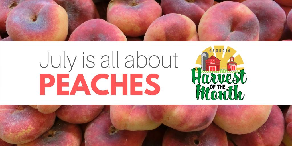 The Harvest of the Month (HOTM) featured item for July is #Peaches! Check out these resources & ideas to celebrate the Harvest of the Month with local produce & grow your #farmtoschool program https://bit.ly/2L9UYNz  #FuelingGA #GeorgiaGrown