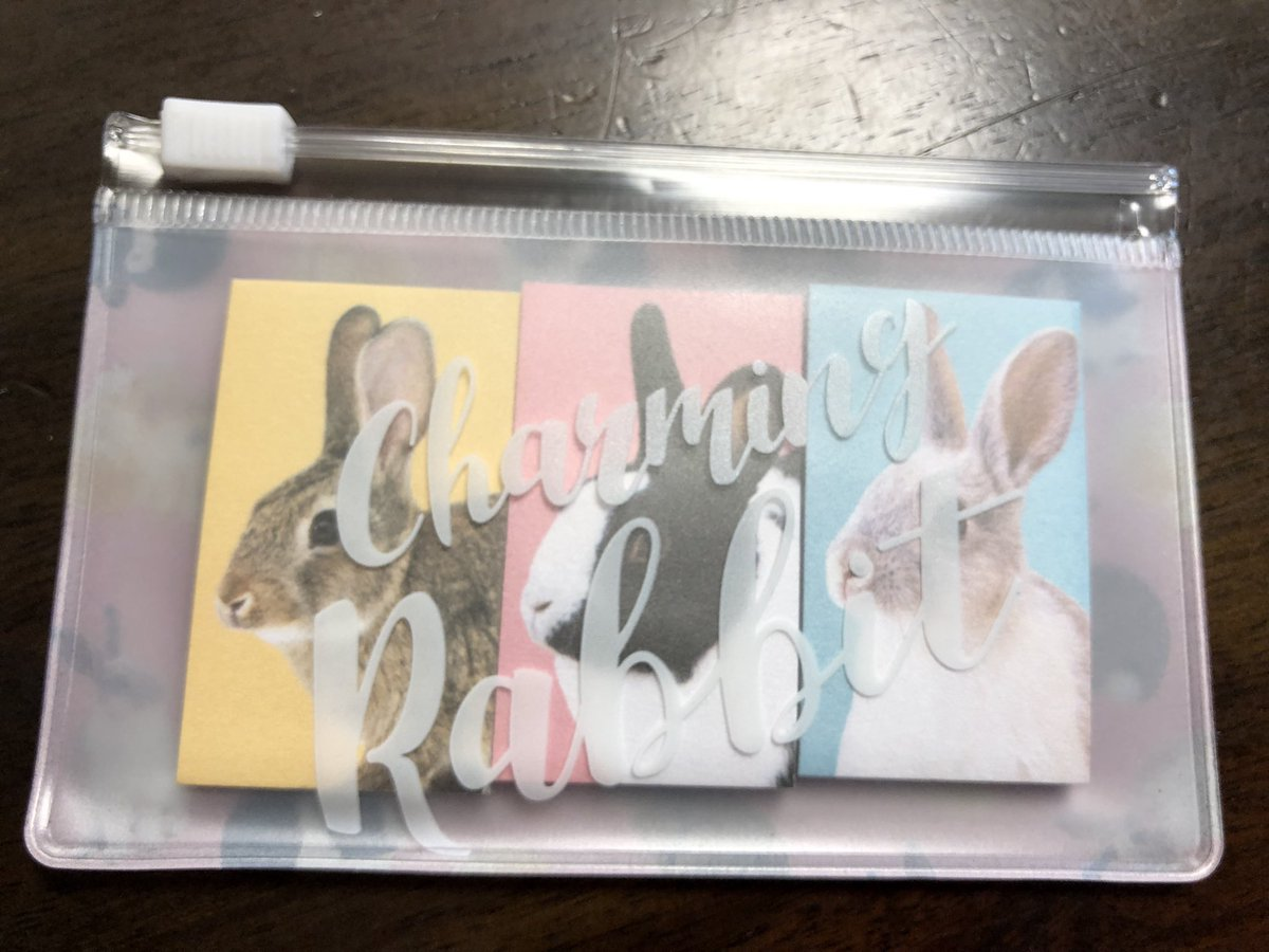 test ツイッターメディア - #キャンドゥ でアニマルグッズたくさんあった!こんな可愛いラビットグッズ。付箋なんだけど使い終わってもポーチが可愛いから嬉しい〜🐰💓 #うさぎ #rabbit https://t.co/vb85EAU54L