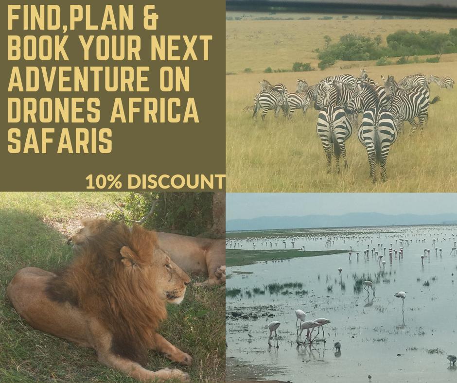 Drones Africa Safaris (@DronesSafaris)   Twitter