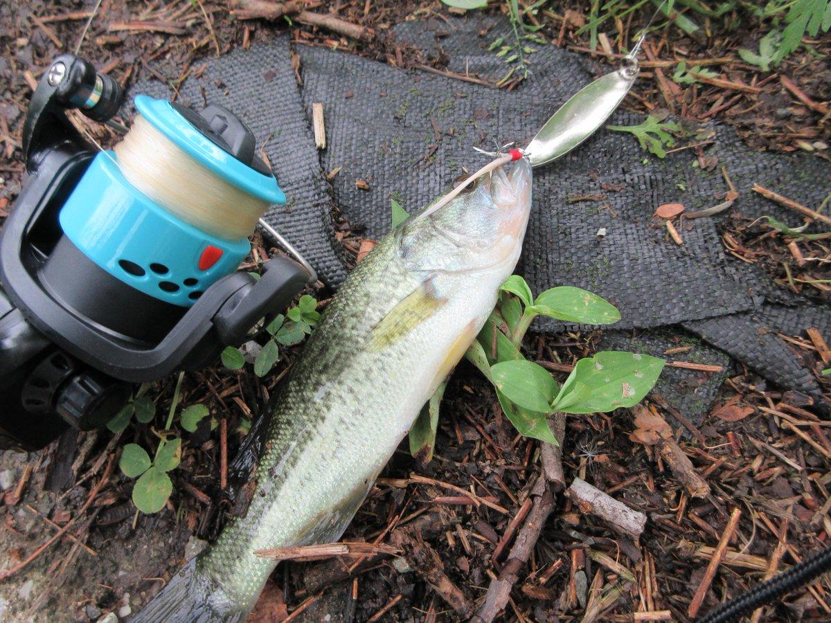 test ツイッターメディア - 帰宅途中に試し釣り。ダイソーグッズだけでバス釣り出来そうです。使ったのはダイソーのスプーンです。でもこのロッドで、メジャーな場所で釣りをするのには、少し抵抗があります。 #ダイソー #パックロッド #バス釣り https://t.co/pXi1ifBav5