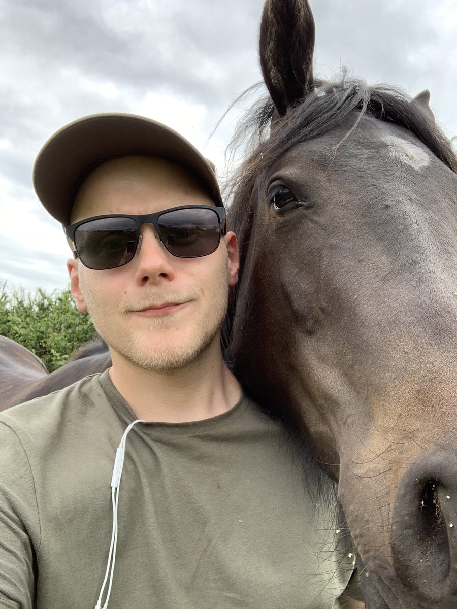 When you rescue a #horse from an electric fence and it decides you are now #bestfriends #fieldwork #ecology #fieldecologist #canitakeyouhome