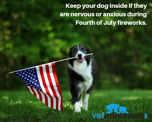 Does your dog become nervous or anxious during July 4th fireworks? Keep your furry friend inside in a safe and comfortable room. You can even turn on music or the TV to disguise the noise. Find out more tips here: bit.ly/2WAwBCF #pethealth #petsafety #dogs #fourthofjuly