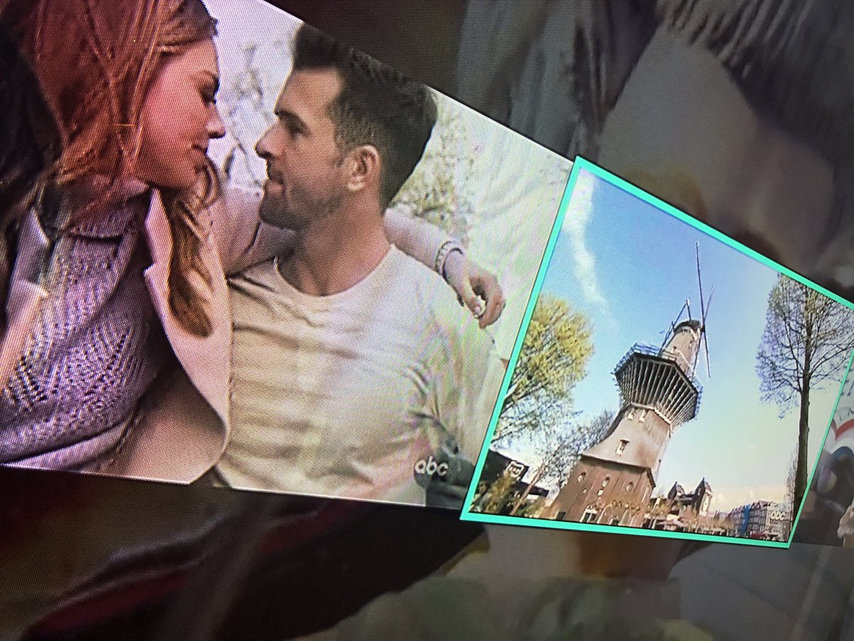Image result for windmill katie mcbroom