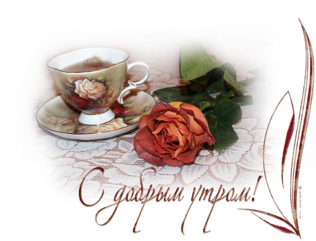 Открытки, гифки с добрым утром и хорошим днем прикольные женщине