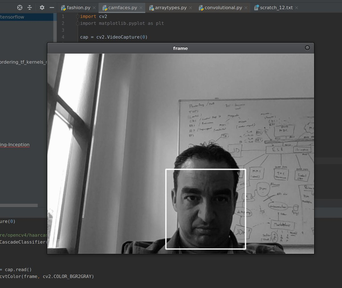 opencv - Twitter Search