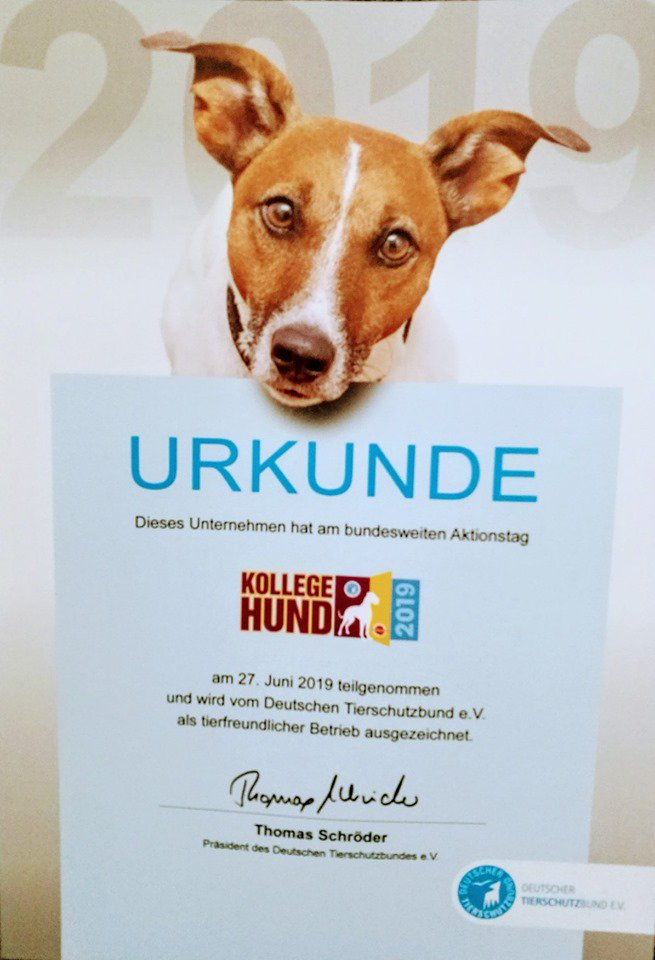 Hund Kaufen Saarland