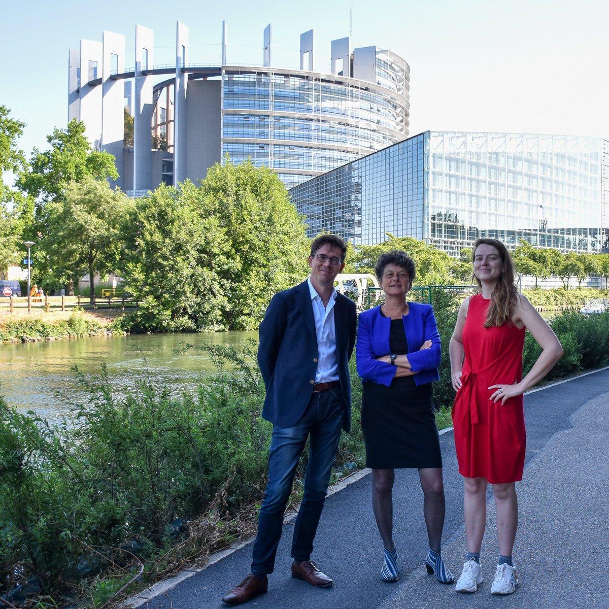 🇪🇺 Vanaf vandaag is het officieel! @BasEickhout, @Tineke_Strik en @kimvsparrentak zijn Europarlementariërs voor GroenLinks in de Groene fractie @GreensEP. Samen gaan ze de komende vijf jaar aan de slag om Europa groener en eerlijker te maken. 💪