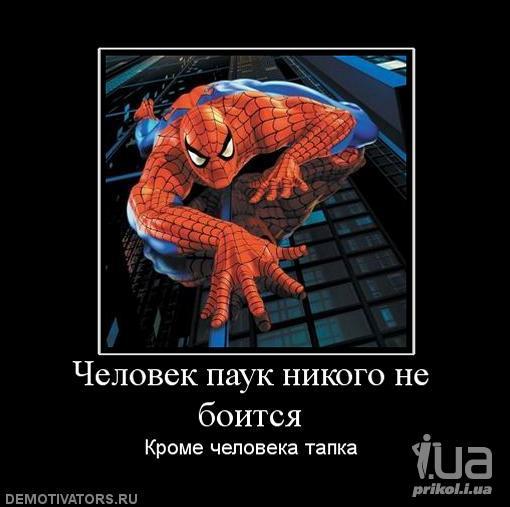 смешные демотиваторы человек паук иваненко забеременела