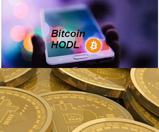 should hbcu invest in cryptocurrency