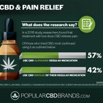 What does the research say about CBD and pain relief? We are in the middle of CBD revolution as millions are waking up to the potential of CBD as an aid in pain relief 😌🌿   Source: https://t.co/APbtRfdn4w 📝  #PlantMedicine #medicine #Nature #agriculture #sustainable #CBD