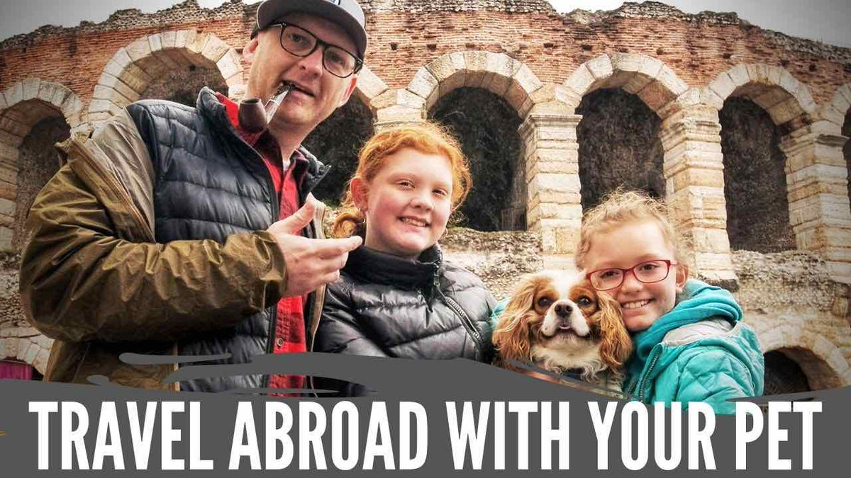 Have you ever thought about flying with your pet or taking your furry friend abroad? Find out everything you need to know here!  http://bit.ly/InternationalPetTravelYT  … #traveltips  #pettravel  #nonrevlife  #interlinerateam