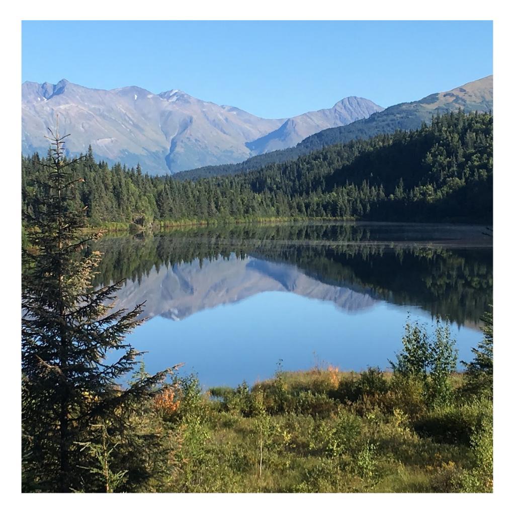 Cool down in Alaska! Camp out and enjoy the beautiful scenery all day.  #alaska #alaskaphotography #alaskan #travelalaska #alaskaadventure #lovealaska #alaskaadventures #alaskasummer #onlyinalaska #hikealaska #alaskaliving #naturealaska #sharingalaska