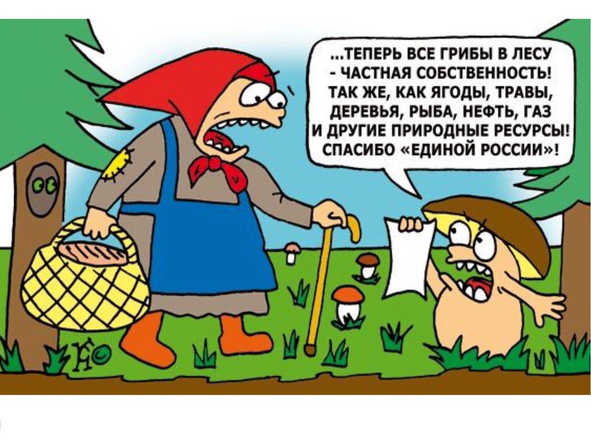 Смешные картинки про лесных жителей с надписями, днем рождения