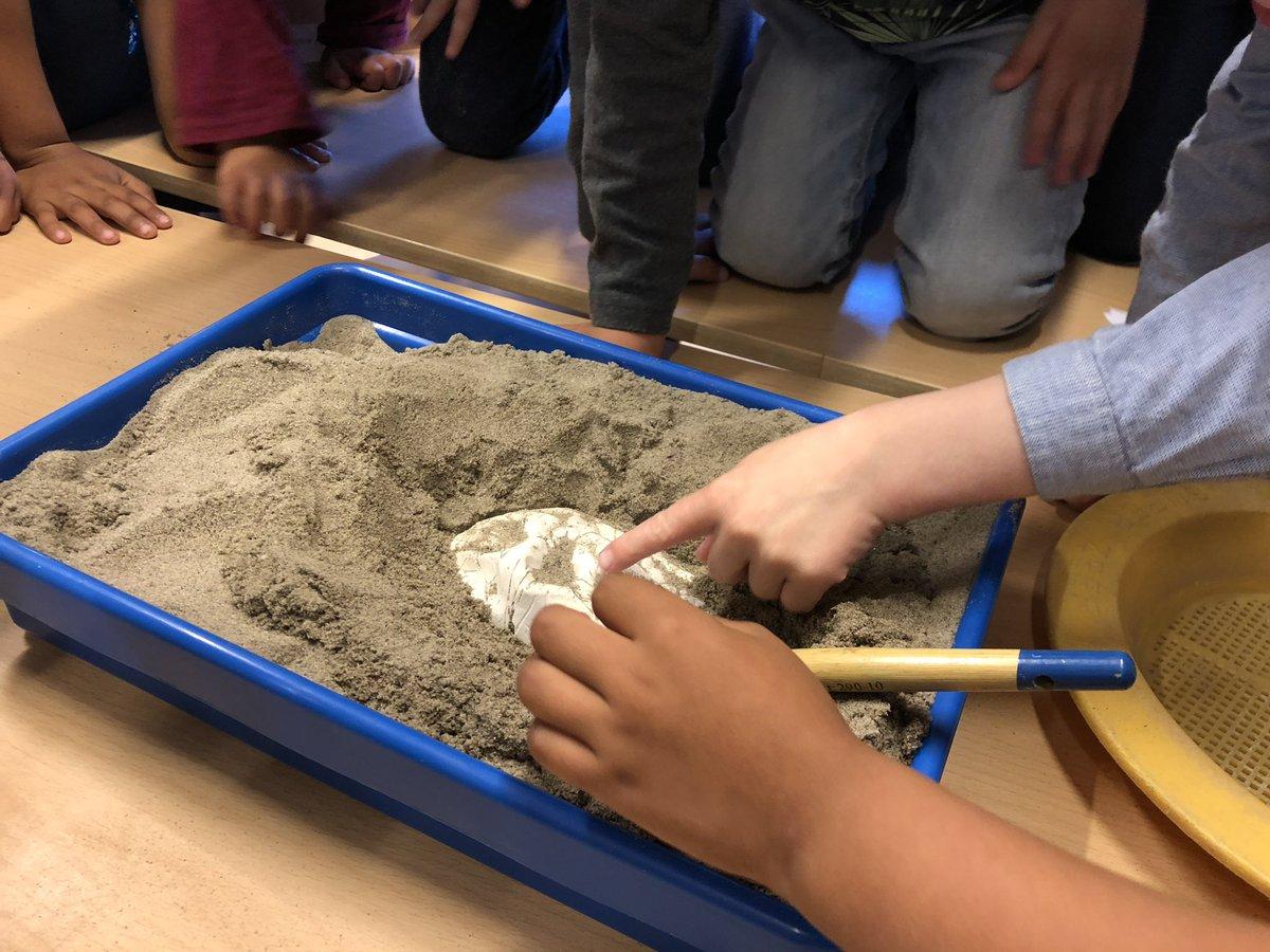 test Twitter Media - RT @juf_ingrid_: Thema 'dinosauriërs ': opgravingen, meten en vergelijken van botten. En een vulkaan in de bouwhoek. https://t.co/awKSQ6Tc7r