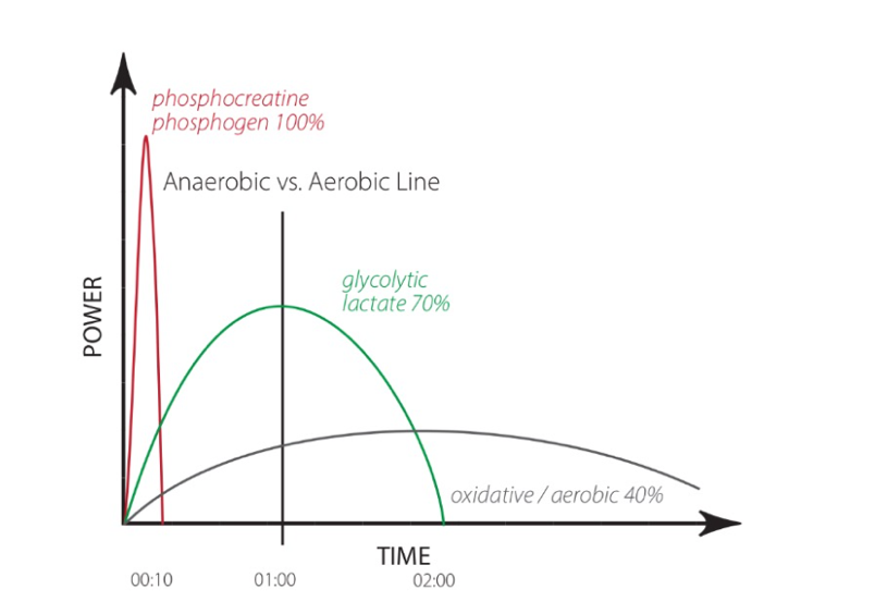 There are 3 metabolic pathways that provide energy for all human action. Fitness requires capacity in all 3. 1.Phosphagen-dominates the highest-powered activities, lasting less than ~10 seconds. A 50-meter sprint or 1-rep-max clean are examples. @CrossFit #CrossFitTraining #CFL1