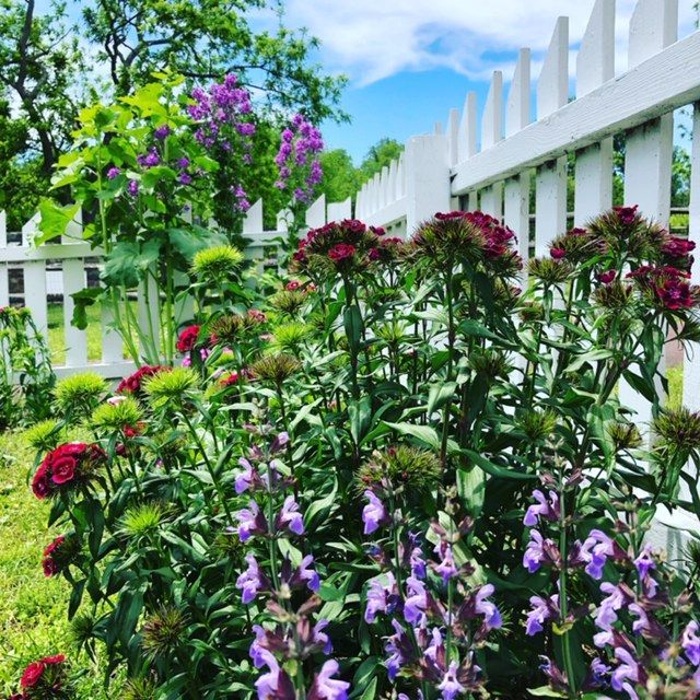 The Thompson-Neely Farmstead's kitchen and ornamental gardens will be one of four featured gardens in the New Hope Historical Society's 25th annual Garden Tour on September 14.  You can learn more about the tour at http://bit.ly/2RKF9RV