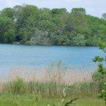 Découvrez la faune et la flore peuplant la Réserve écologique des Maillys en été ! 2 visites guidées sont programmées avec la @LPO21et71 samedi 6 et mercredi 10 juillet #environnement #biodiversite Réservation obligatoire au 03 80 63 65 92 ou reserve.ecologique@cotedor.fr