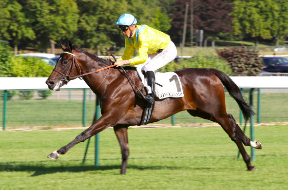 d3b9d6ca284fb ... in the Prix du Jardin Alpin at @paris_longchamp! Well done to  connections - Ecurie JL.Tepper/Frank A. Mc Nulty, JC.Rouget, Haras de la  Haie Neuve ...